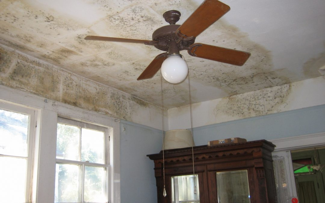 The 3 Types of Water Damage